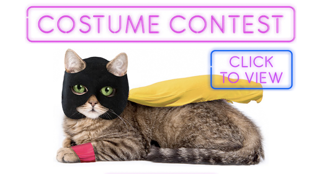 adult-swim-costume-contest-large
